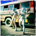 Mr and Mrs Mud – our performance costumes for Burning Man, Nevada2011